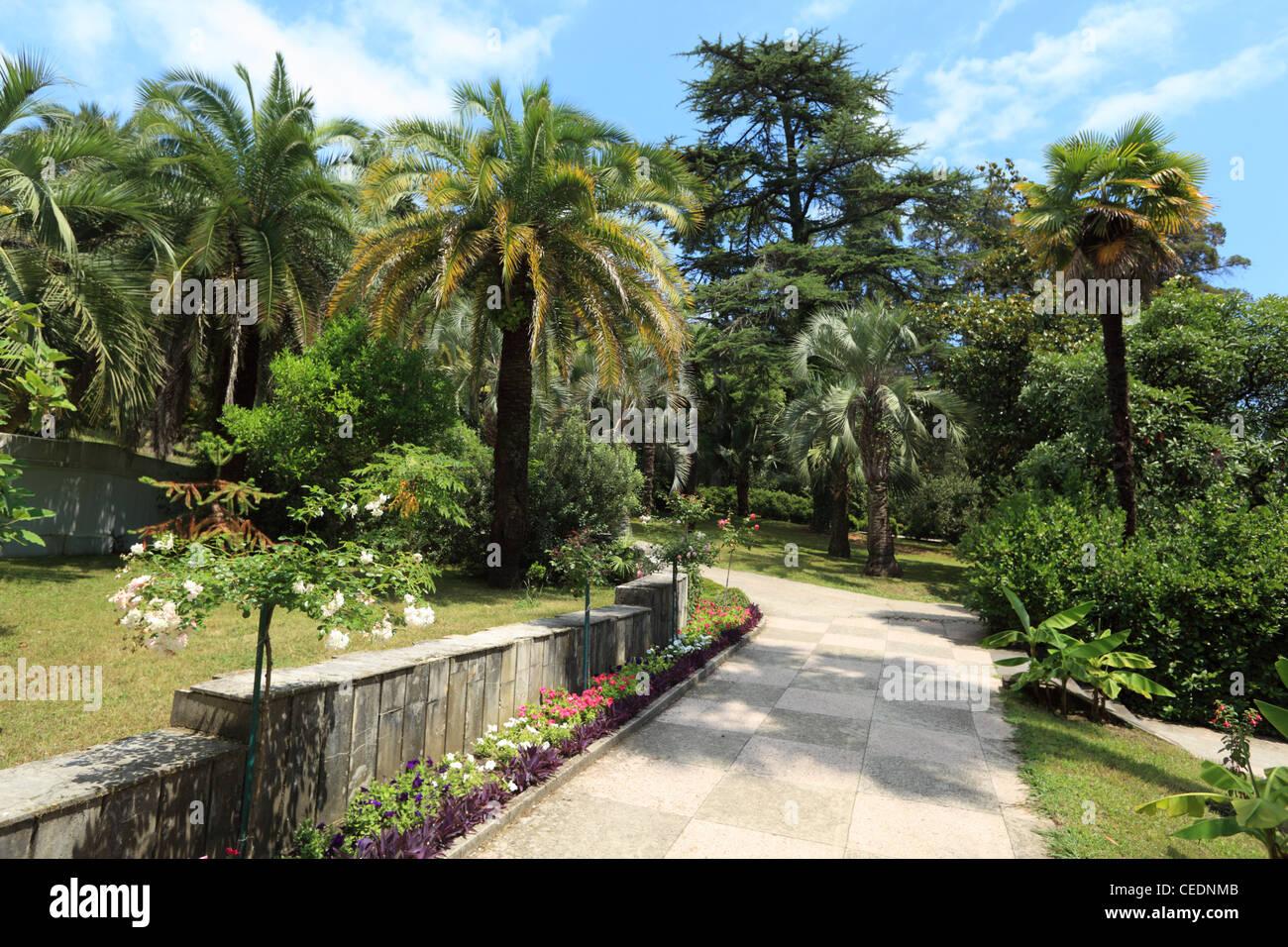 Sochi Arboretum is a museum of nature 34