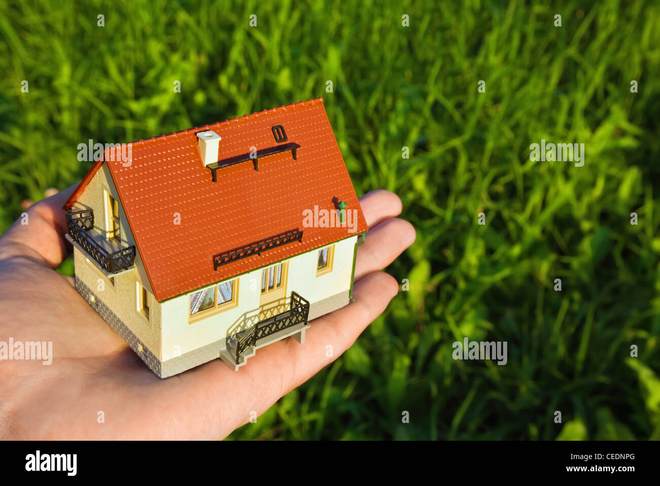 house with garage on palm on background of the herb - Stock Image