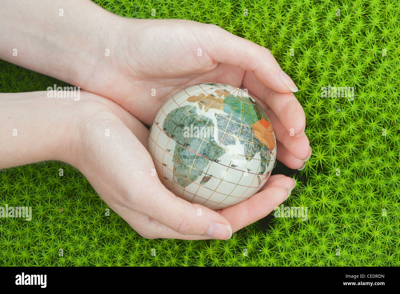 Save the world. Earth globe in a palm hands on green moss background. - Stock Image