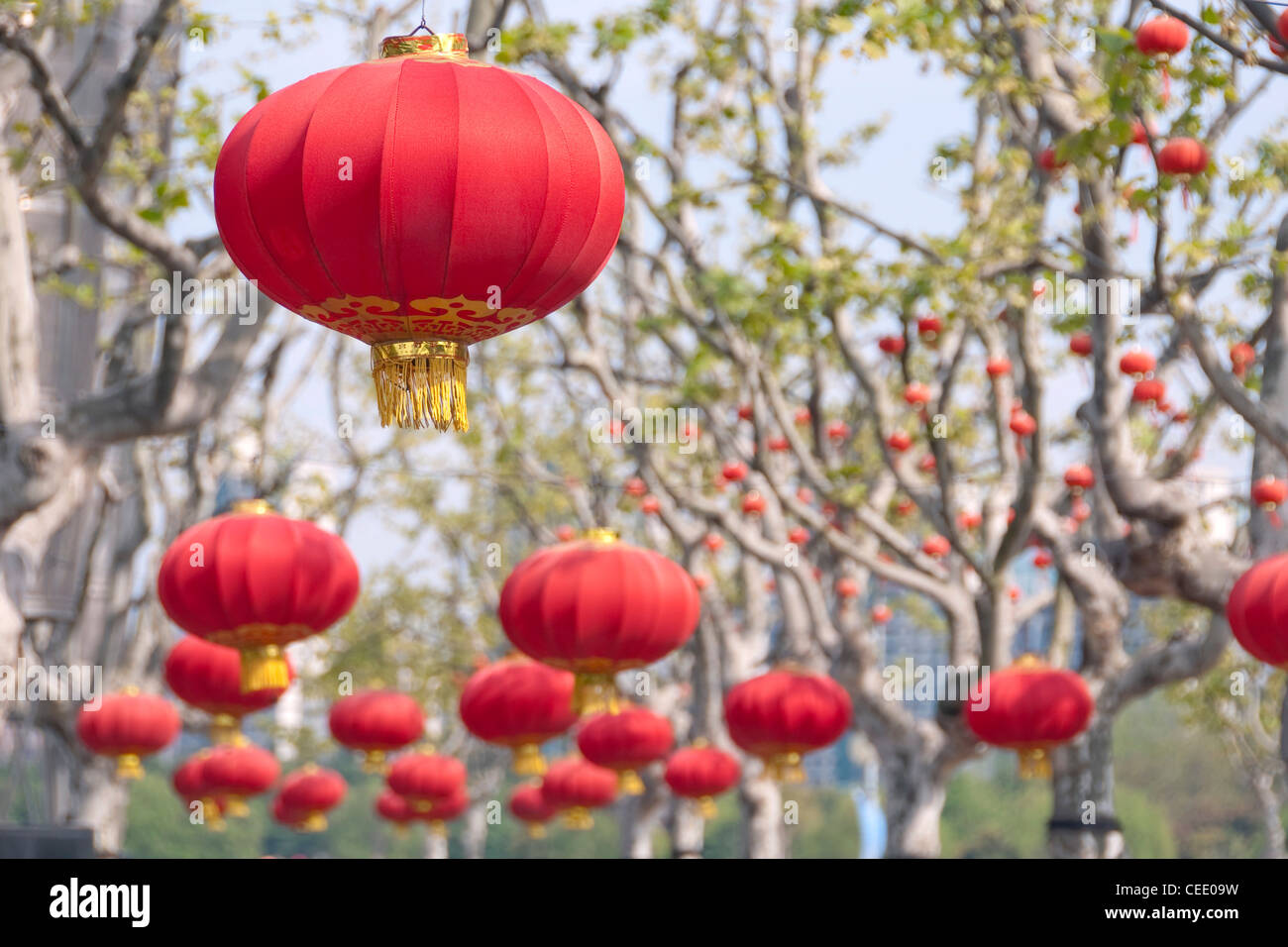 Red lanterns decoration in the trees of Century Park - Shanghai (China) - Stock Image