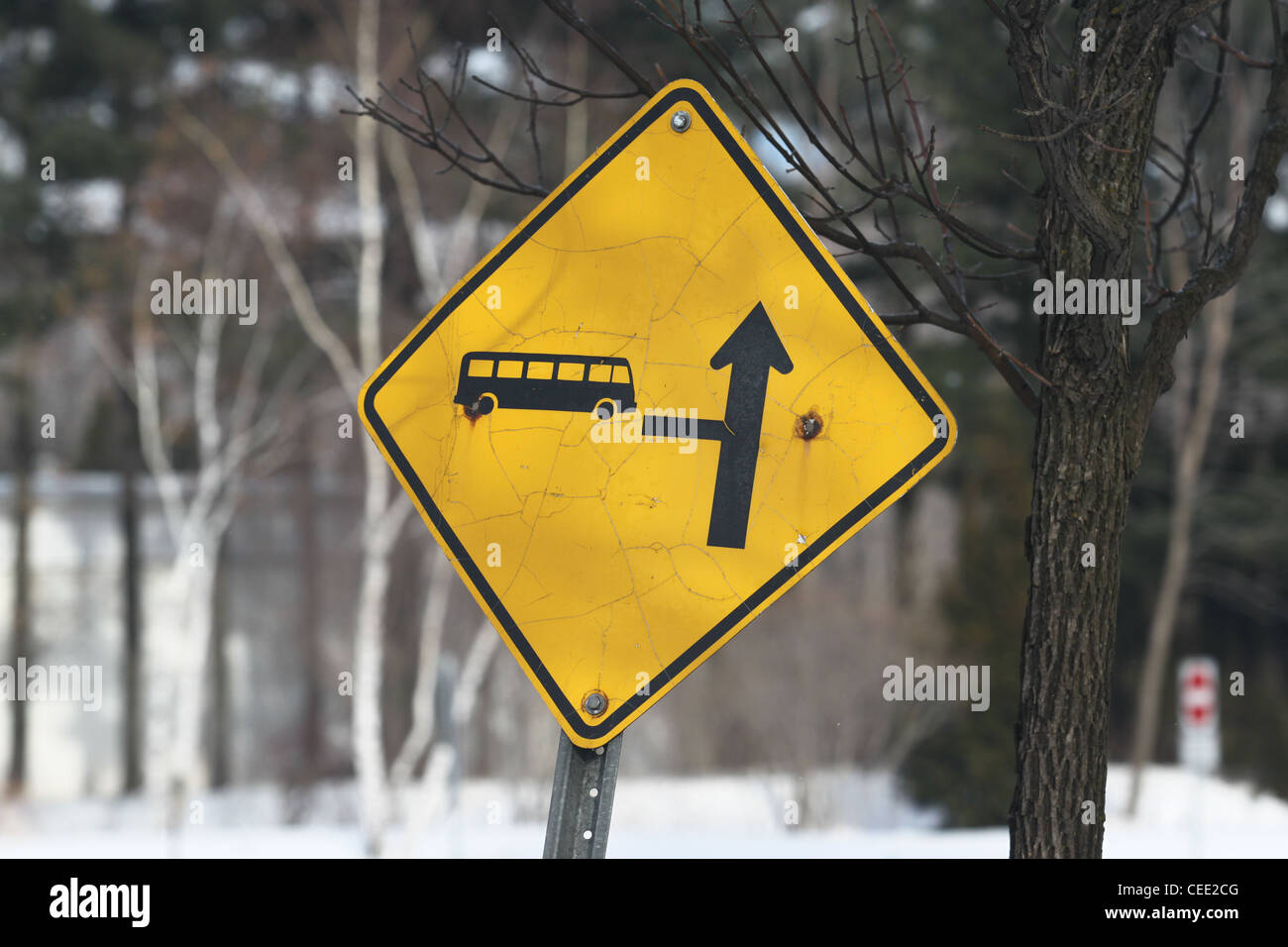 Yellow and black road sign directing bus traffic - Stock Image
