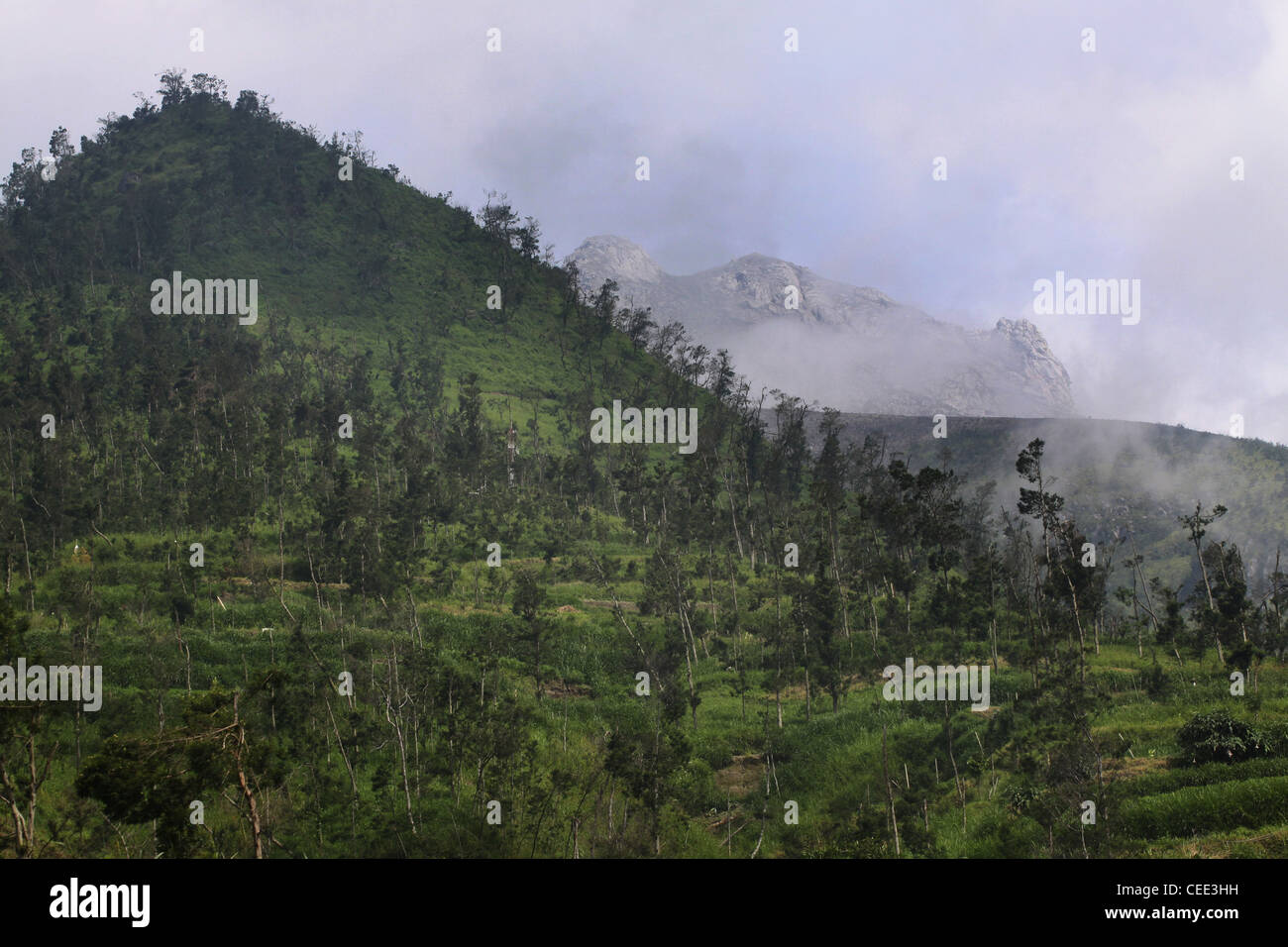 terraced farm fields below crater Mount Merapi Yogyakarta Indonesia - Stock Image