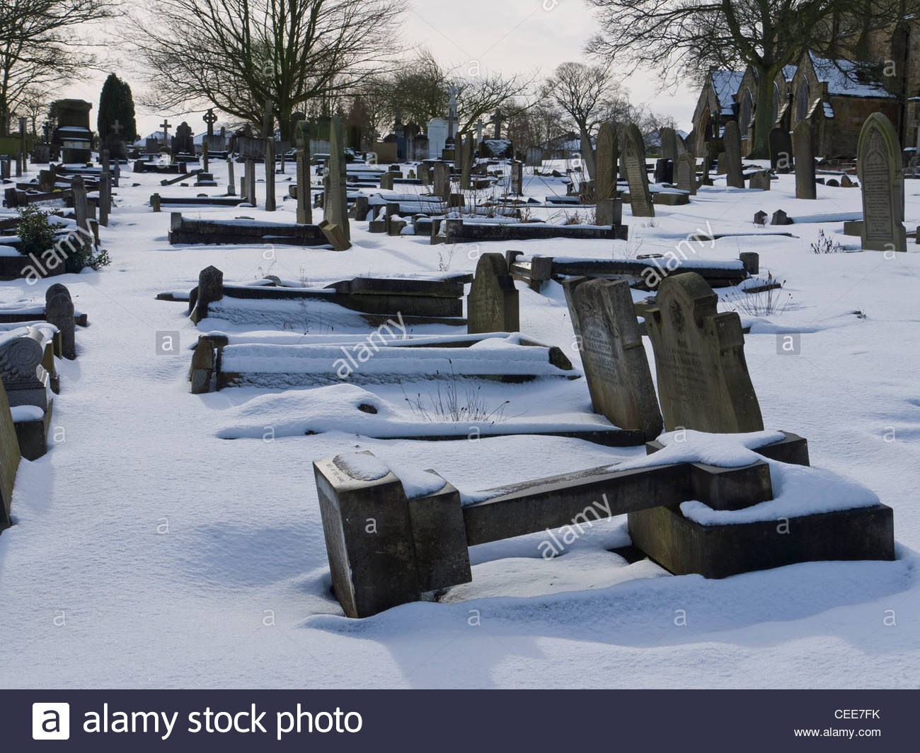 Head Stones Crosses in Snow Laid down for Health and Safety Crooks Cemetery Sheffield - Stock Image