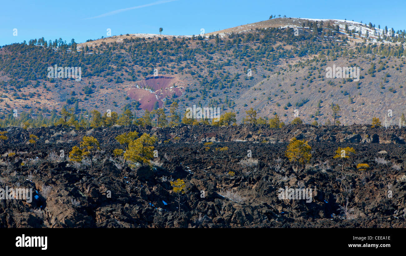 Lava field by the Sunset Crater volcano in Flagstaff, Arizona - Stock Image
