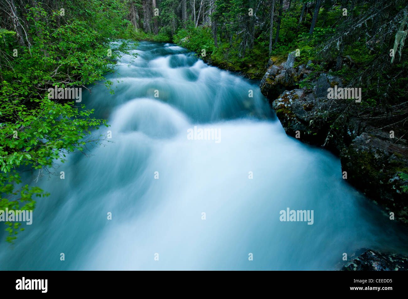 The Lostine River in the Eagle Cap Wilderness in the Wallowa-Whitman National Forest in northeast Oregon - Stock Image