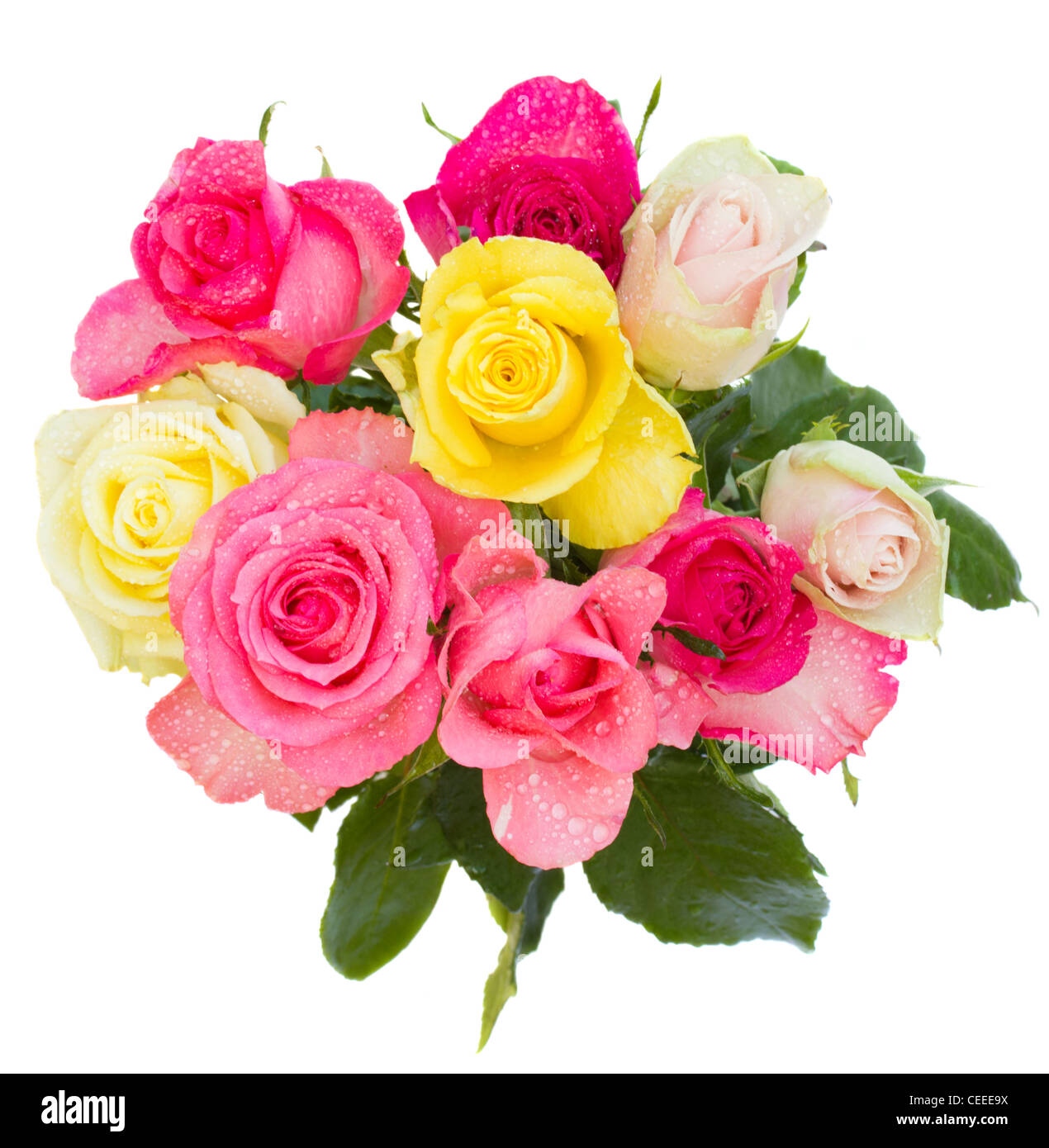 Round Bouquet Stock Photos Round Bouquet Stock Images Alamy