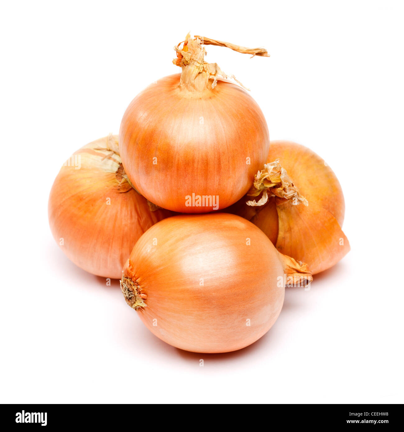 Onions on white background - Stock Image