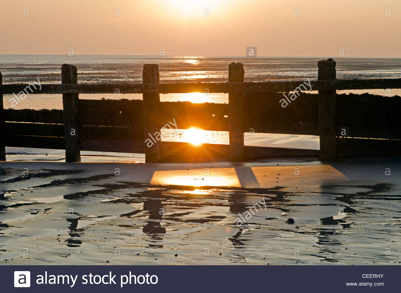 Groyne on a sandy beach at sunset with the low sun reflecting in wet sand on the South Coast of England, UK. - Stock Image
