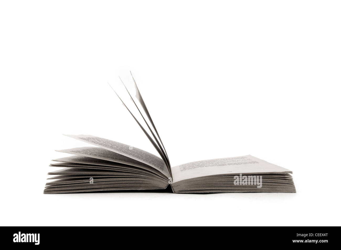 Big open book over a white background - Stock Image
