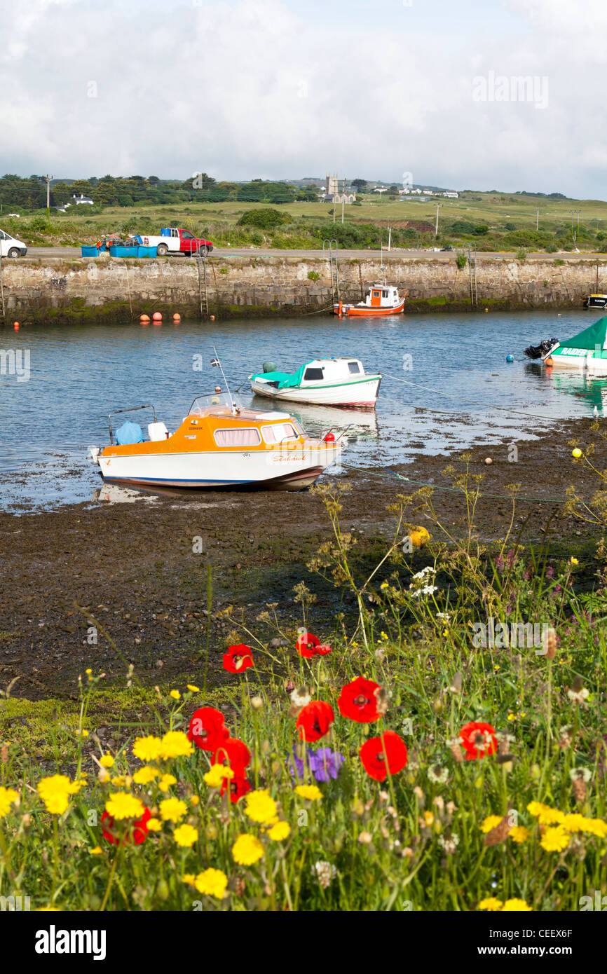 Boats at Hayle Estuary in Cornwall when the tide is out boats accessible - Stock Image
