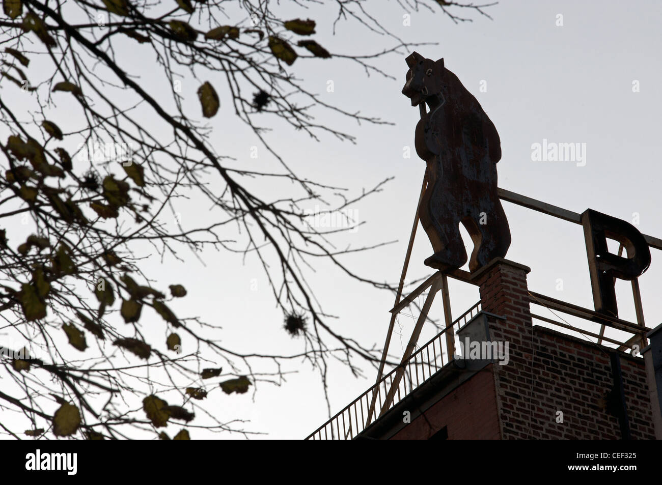 Life size figure of a bear used in advertising on the rooftop of an apartment block, Aachen, Germany. - Stock Image
