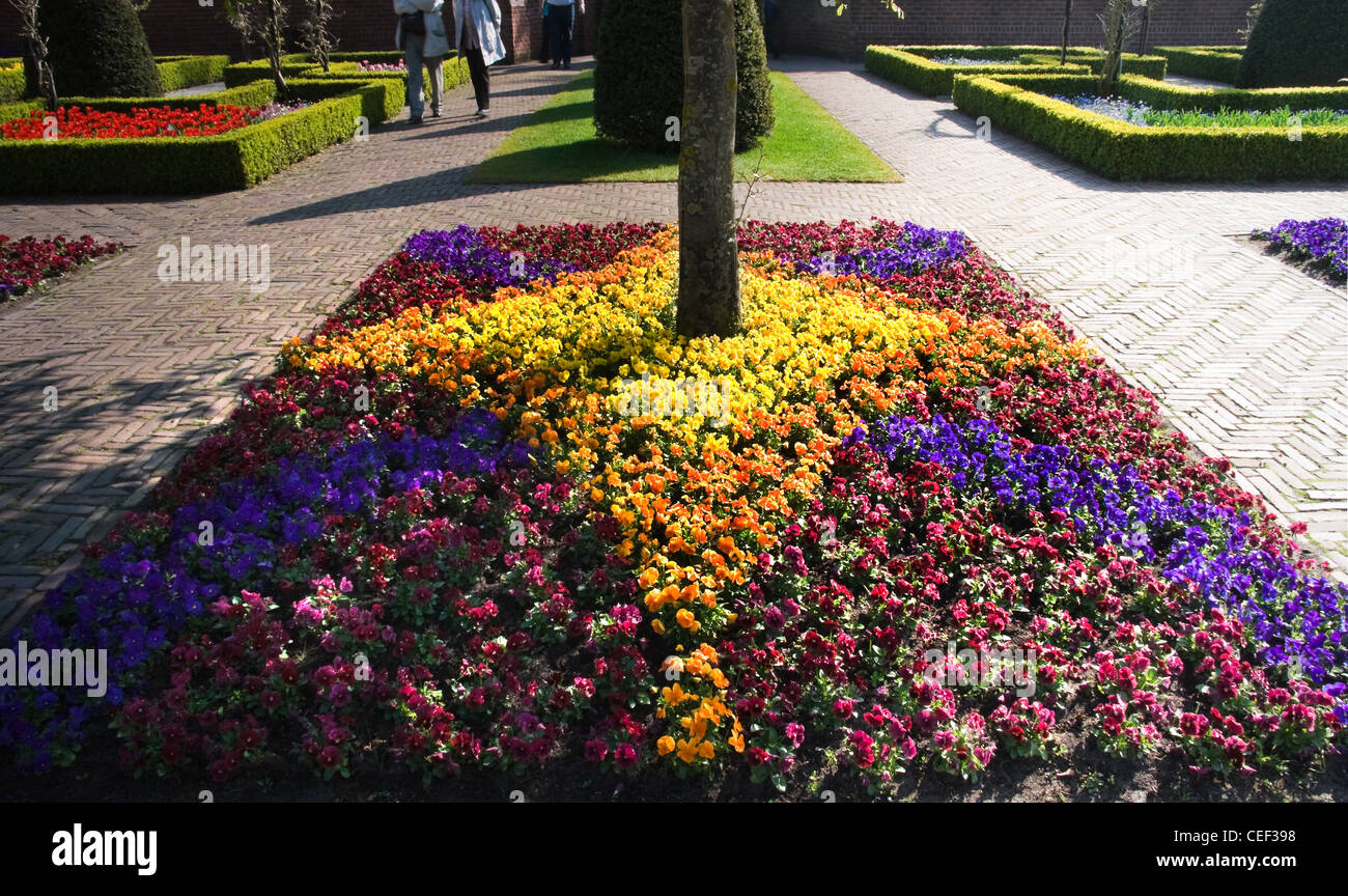 Formal garden with boxwood hedges and violets arrangement in spring - horizontal image - Stock Image