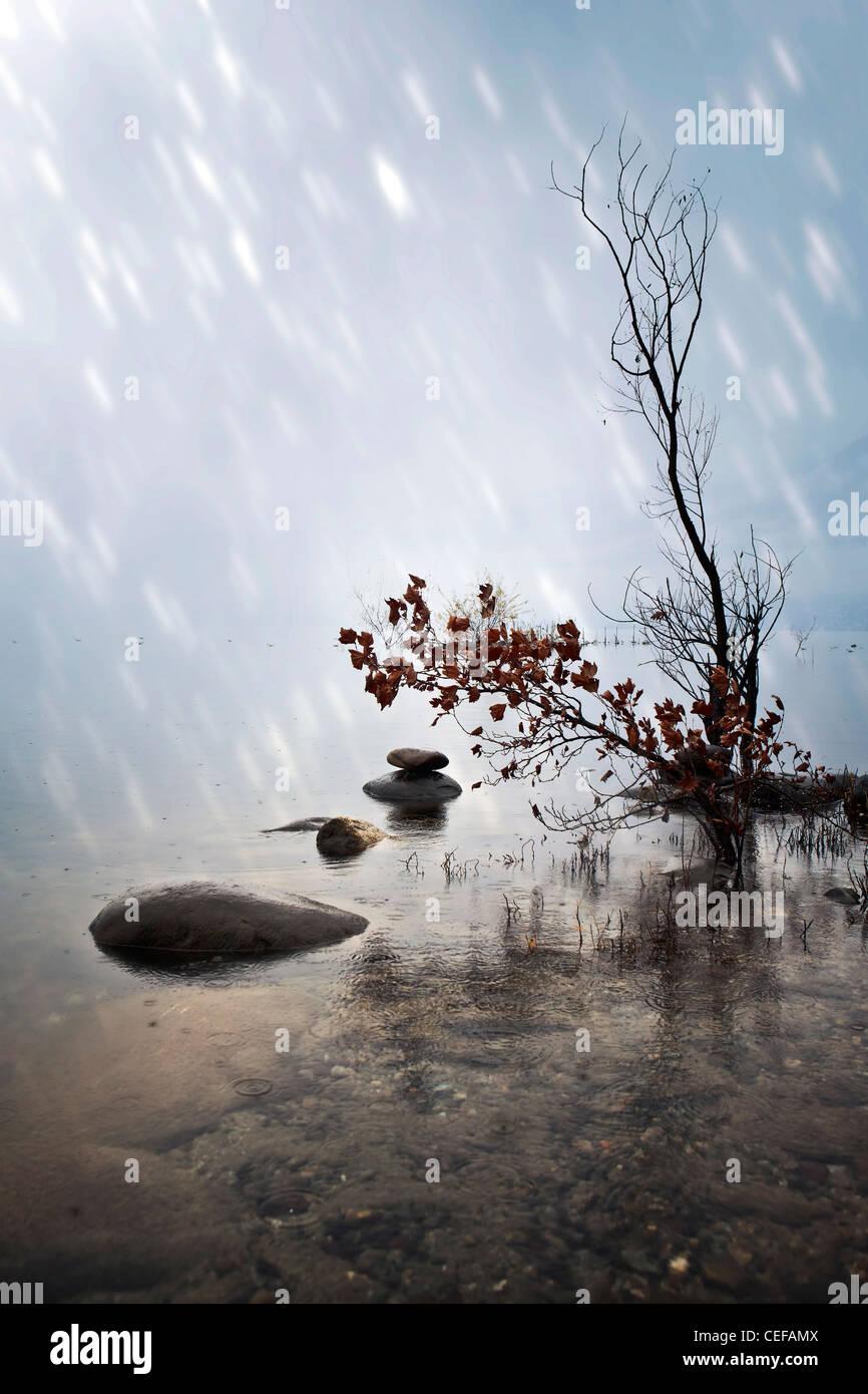 Zen stones in the water during rain - Stock Image