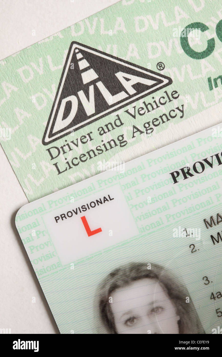 Provisional Driving Licence St...