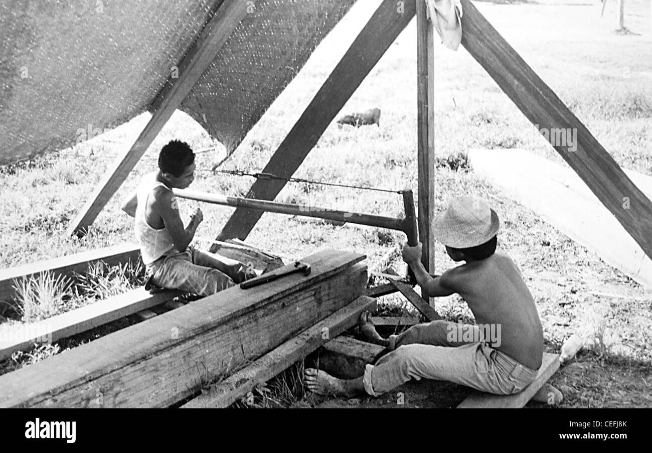 Mindanao Philippines.  Two men saw planks from a solid log - Stock Image
