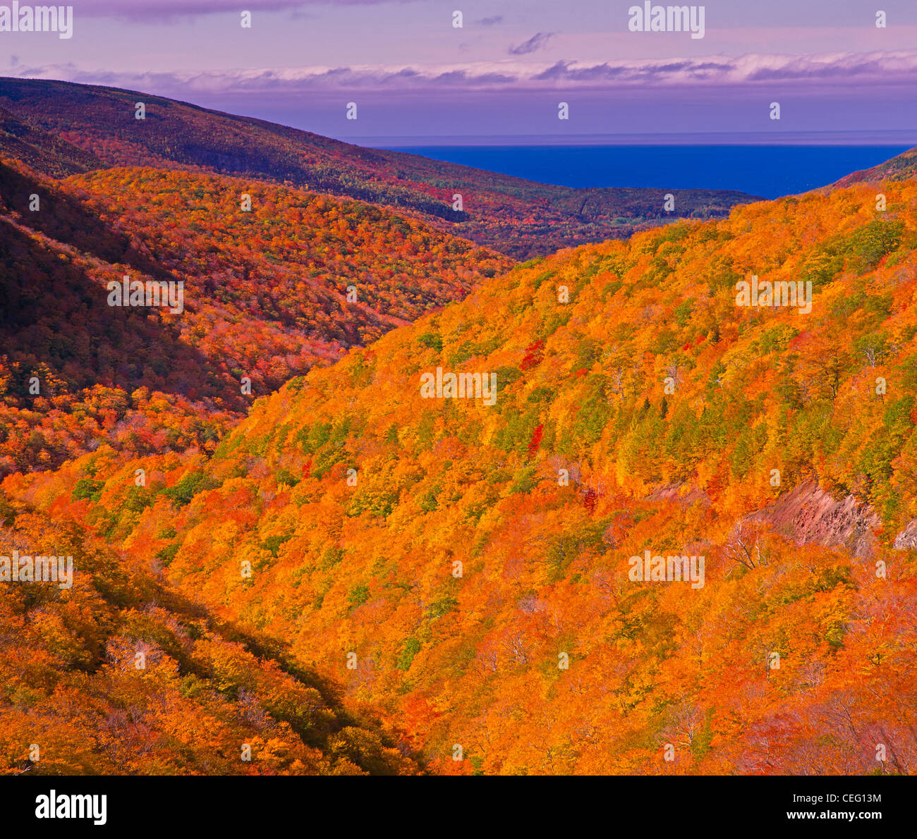 Fall at the Cabot Trail in Cape Breton Highlands National Park on Cape Breton in northern Nova Scotia, Canada. - Stock Image