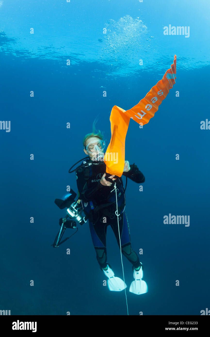 Scuba Diver inflates her Surface Marker Buoy, Baa Atoll, Indian Ocean, Maldives - Stock Image