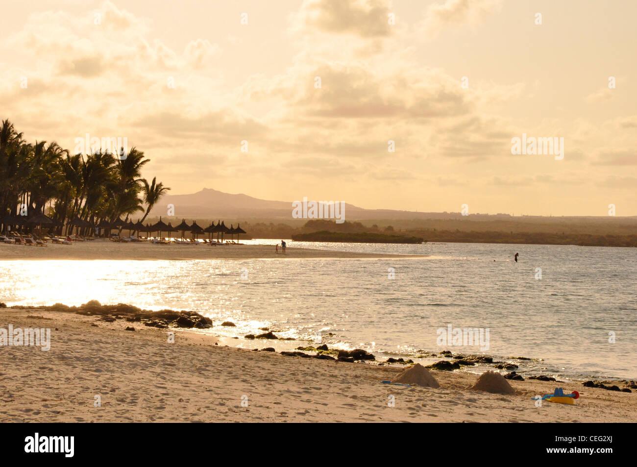Monochromatic seascape sub tropical palms - Stock Image