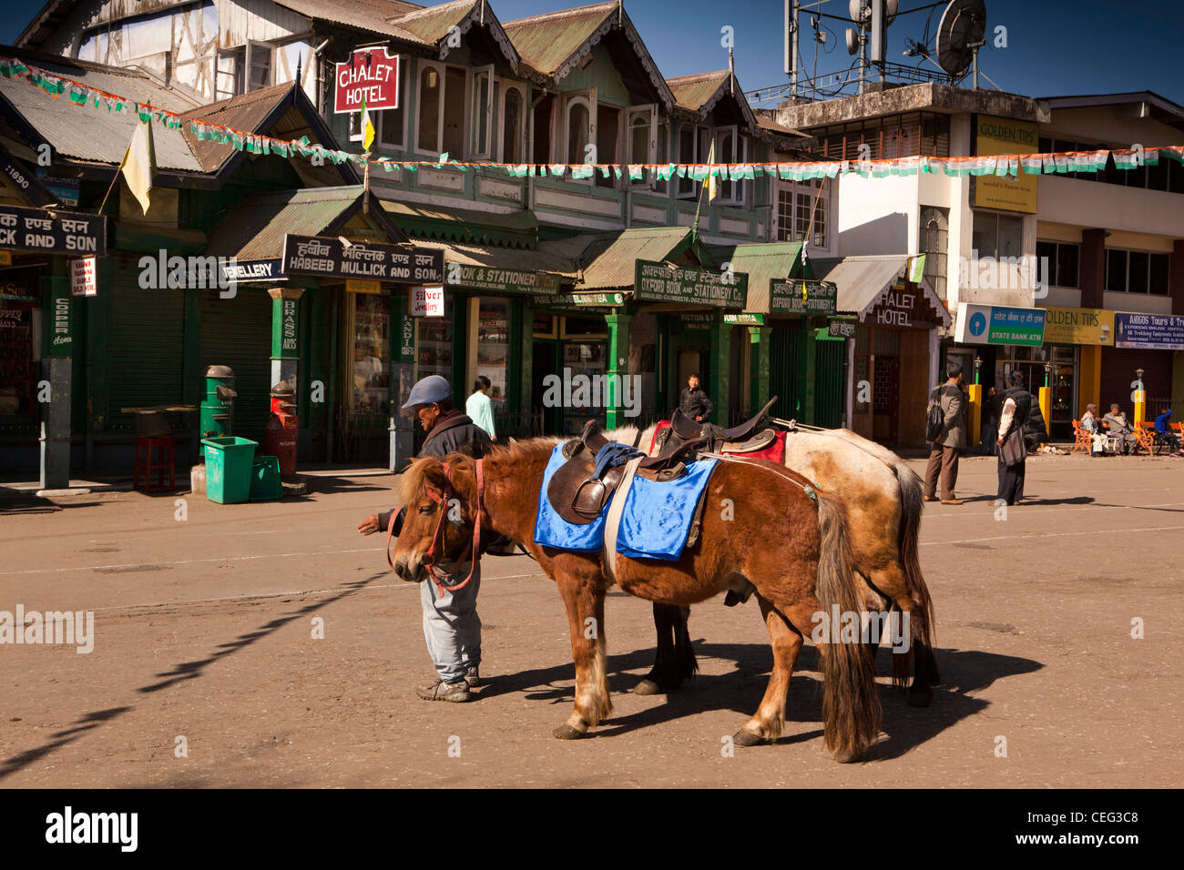 India, West Bengal, Darjeeling, Chowrasta, ponies plying for trade in open square above the Mall - Stock Image