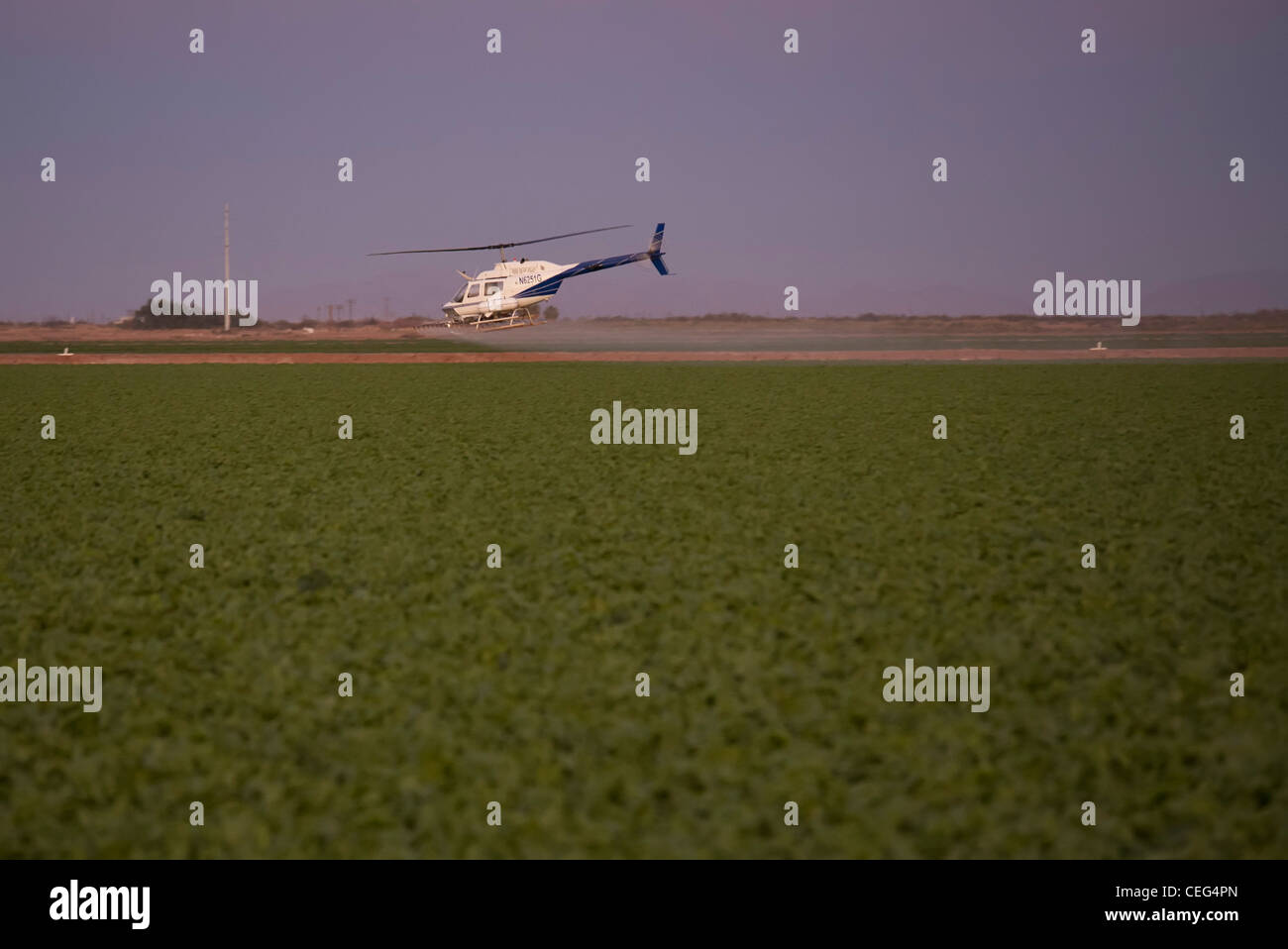 Holtville, California - A helicopter sprays a field in the Imperical Valley. - Stock Image