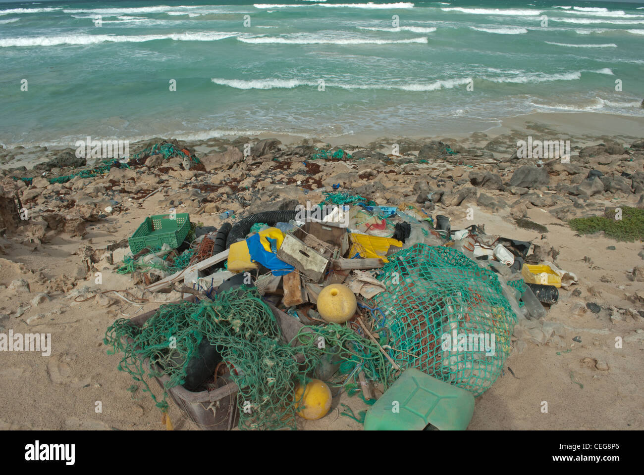 litter washed up on beach Stock Photo