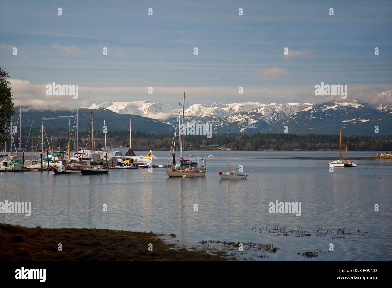 Comox harbour Yacht moorings and float plane berth, Vancouver Island British Columbia Canada.   SCO 7976 - Stock Image