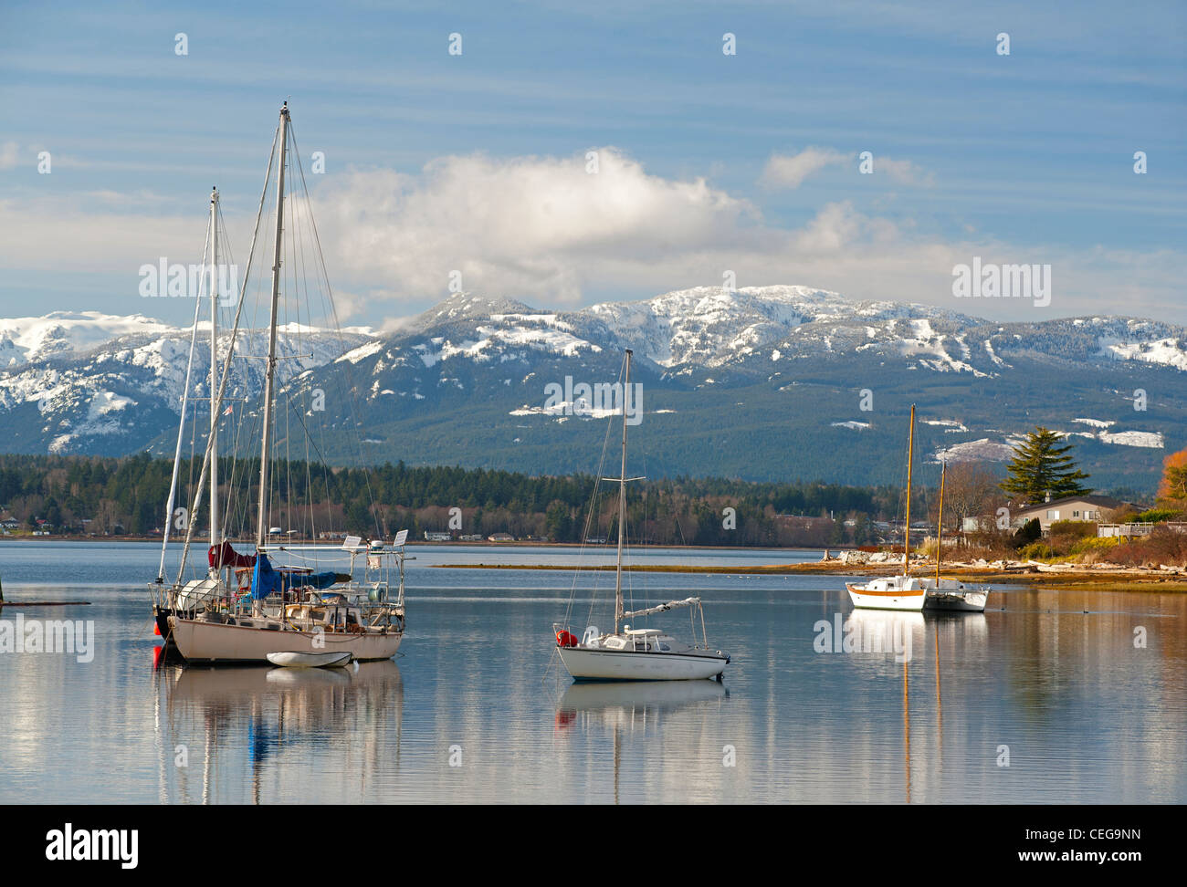 Comox harbour Yacht moorings and float plane berth, Vancouver Island British Columbia Canada.   SCO 7977 - Stock Image