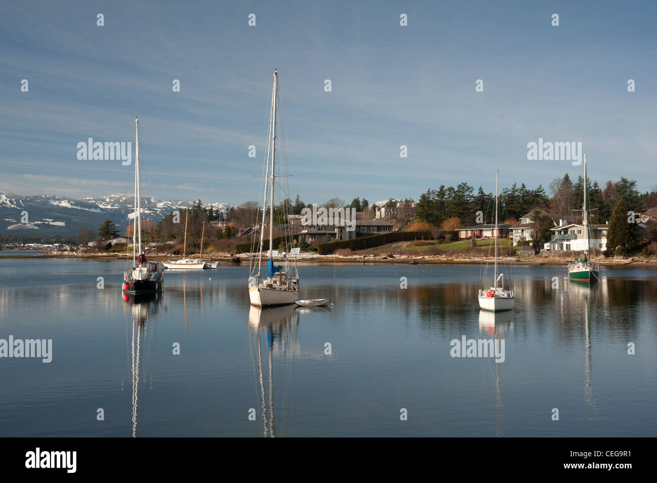 Comox harbour Yacht moorings and float plane berth, Vancouver Island British Columbia Canada.  SCO 7979 - Stock Image