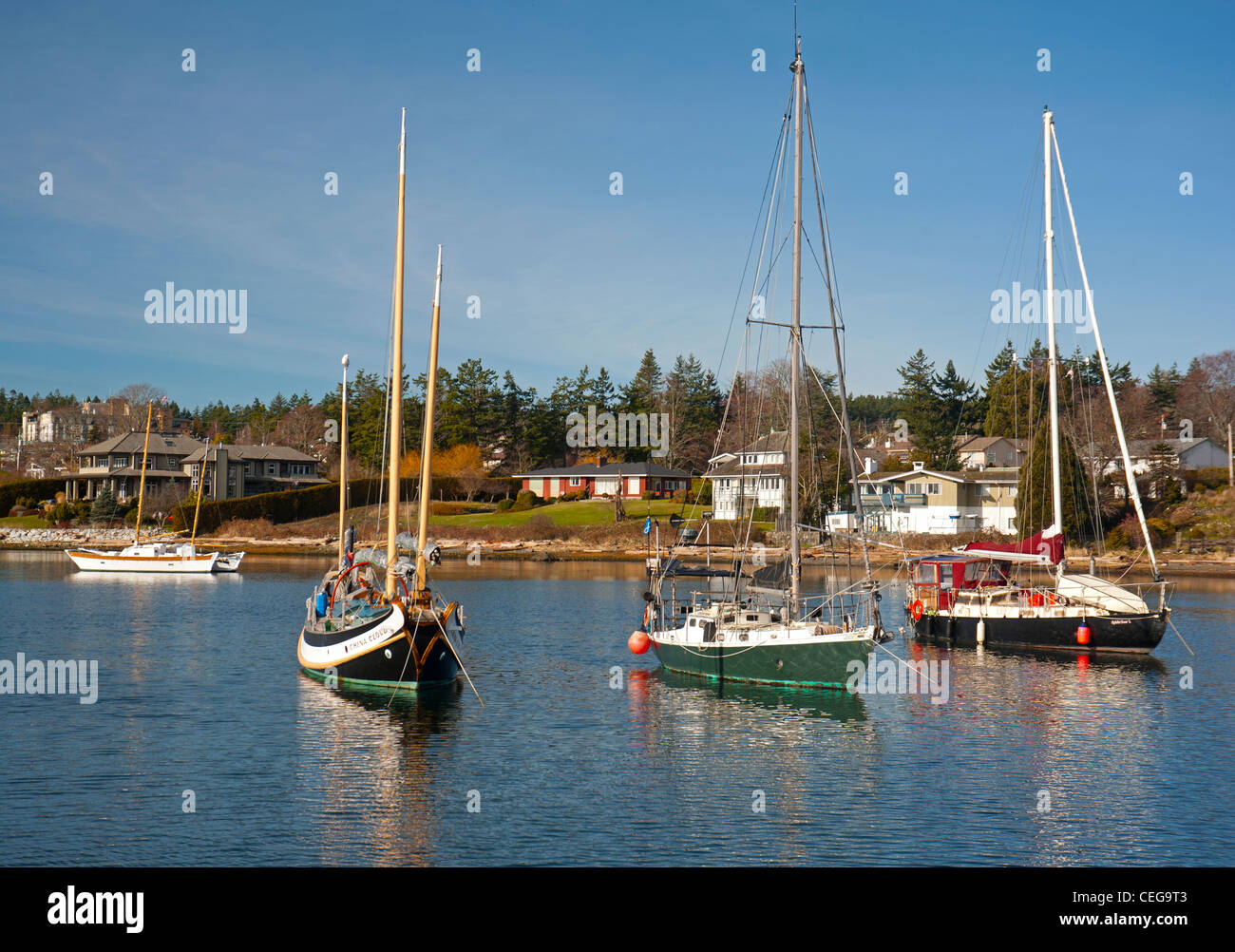 Comox harbour Yacht moorings and float plane berth, Vancouver Island British Columbia Canada.   SCO 7980 - Stock Image