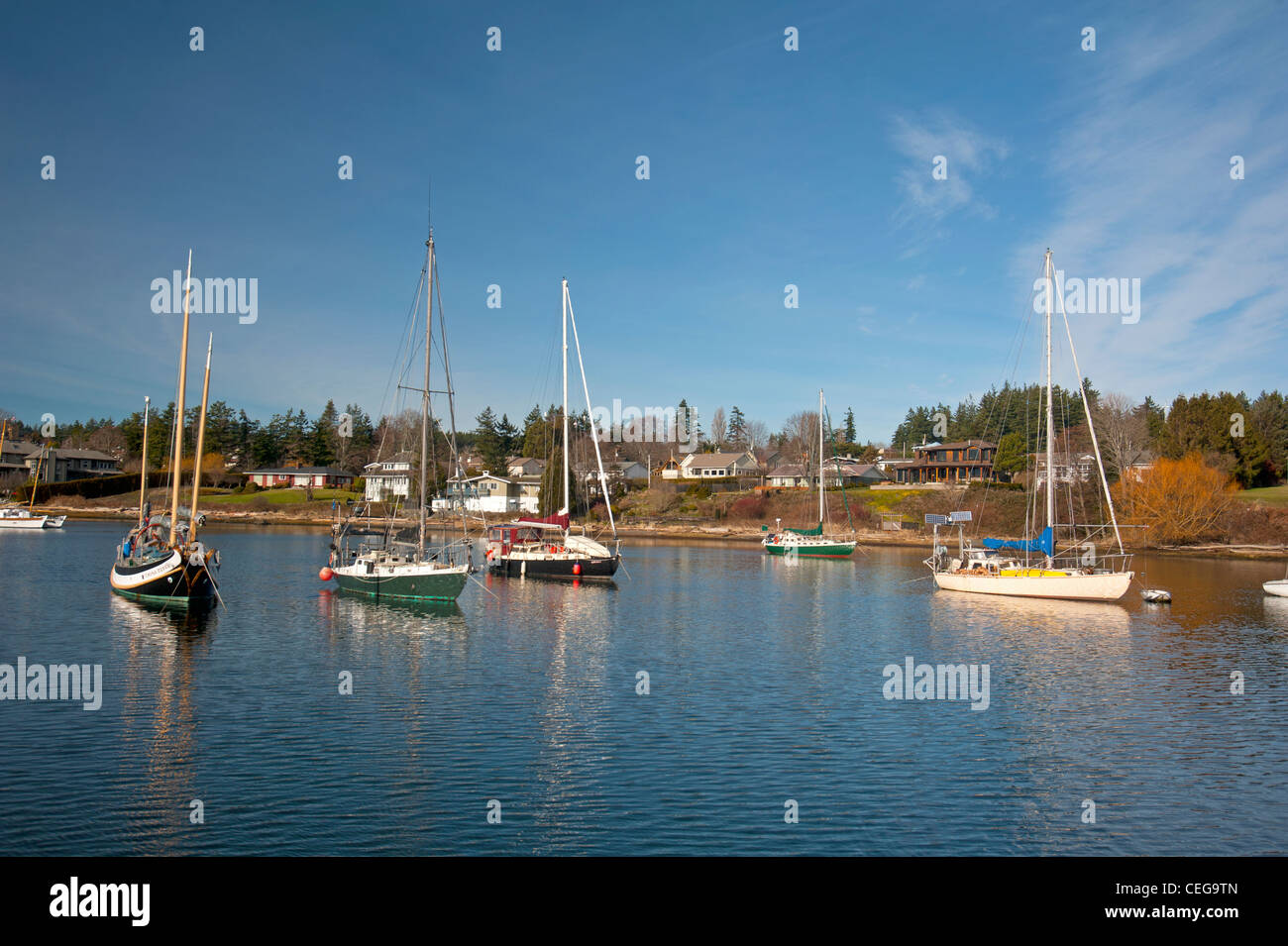 Comox harbour Yacht moorings and float plane berth, Vancouver Island British Columbia Canada.   SCO 7981 - Stock Image