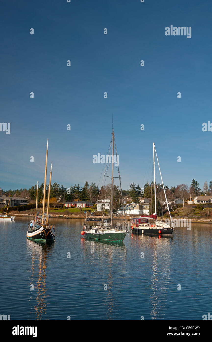 Comox harbour Yacht moorings and float plane berth, Vancouver Island British Columbia Canada.   SCO 7982 - Stock Image