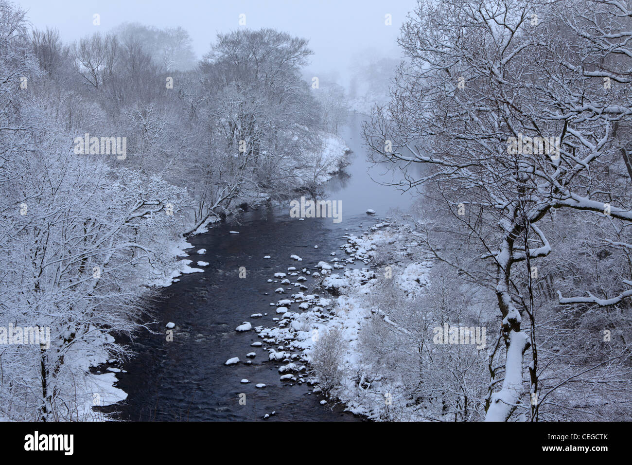 Snow covers the trees along the River Wharfe as seen from Strid Wood, Barden, Wharfedale, Yorkshire - Stock Image