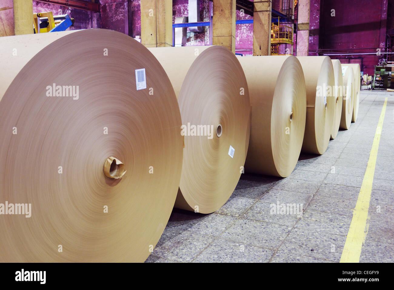 rolls of kraft paper in the workshop - Stock Image