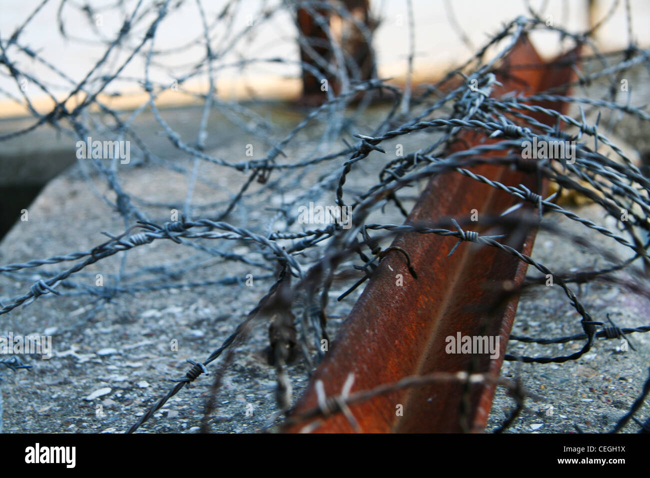 Wrapped In Barb Wire - WIRE Center •