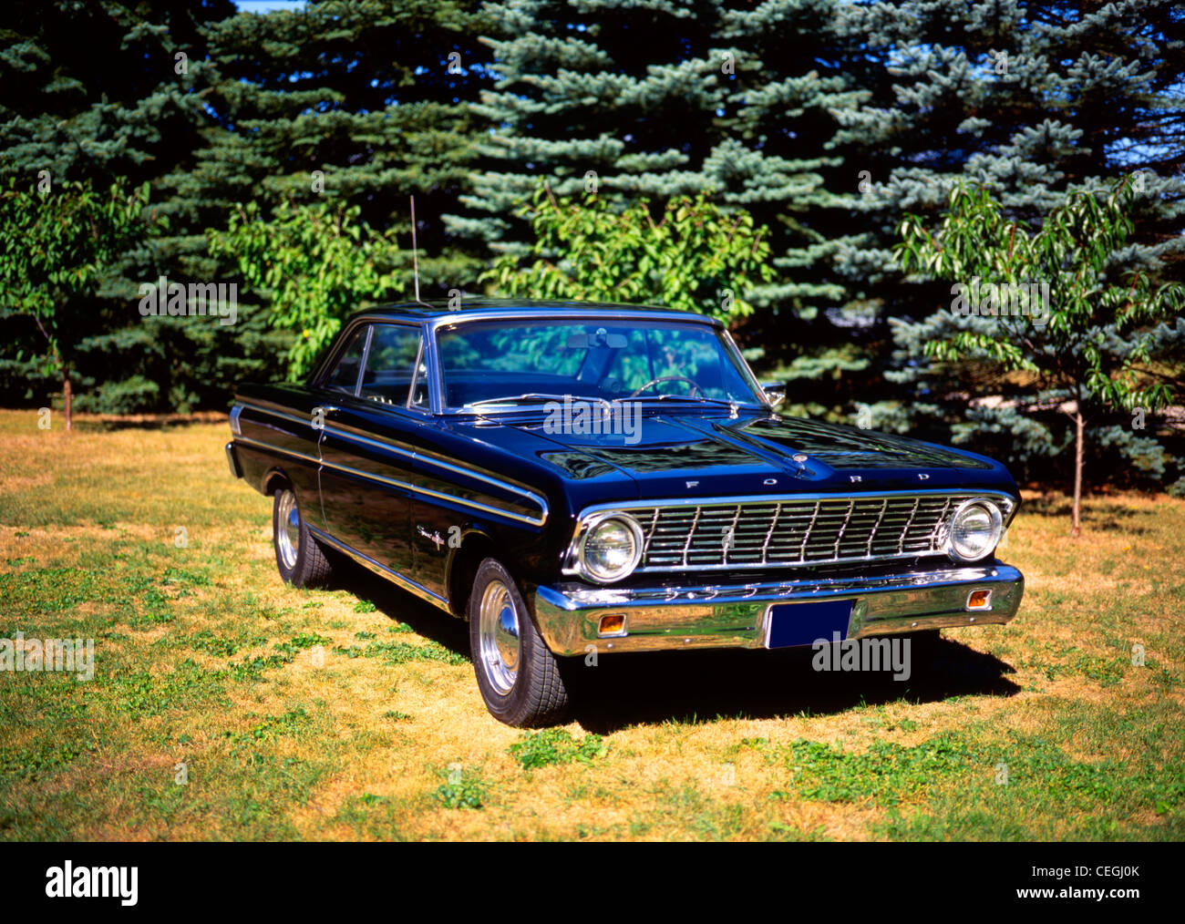 Ford Falcon Sprint Stock Photos Images 1964 Image
