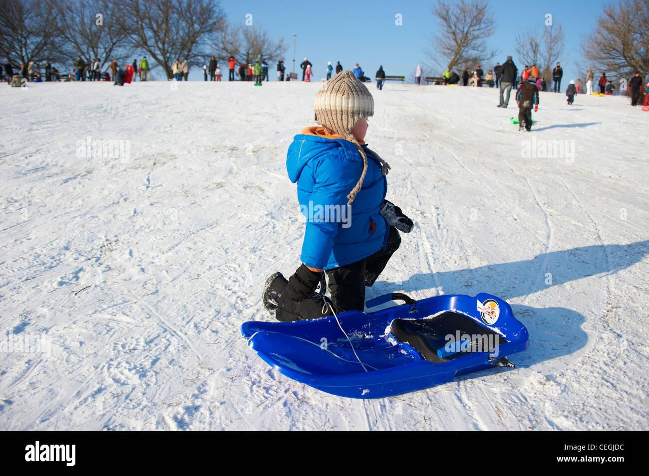 bbb2bfb15 A child little boy sledding downhill winter Stock Photo: 43391640 ...