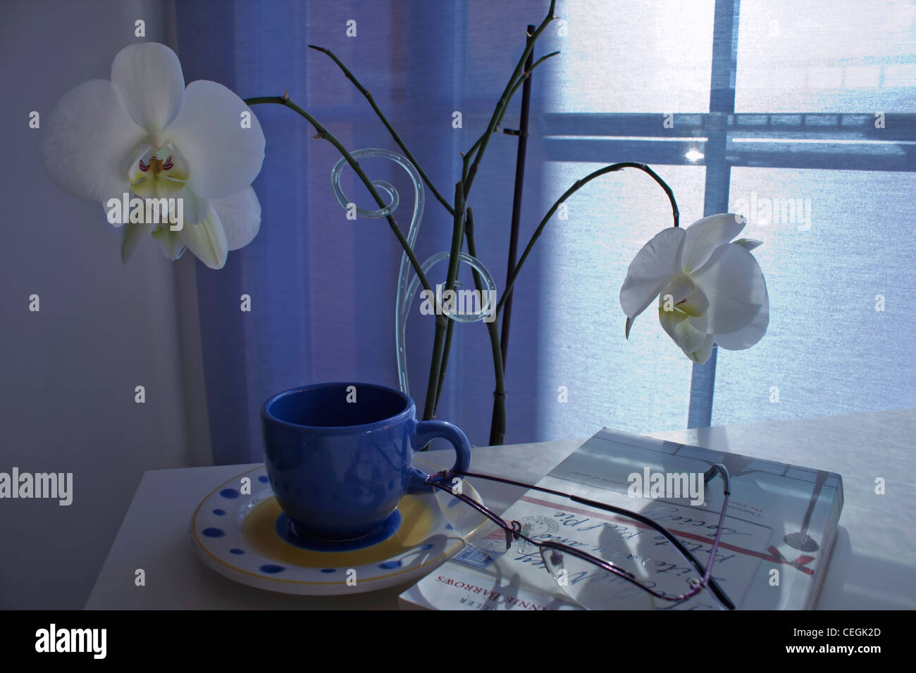 Cup and saucer, book and glasses on table in front of orchid plant. - Stock Image
