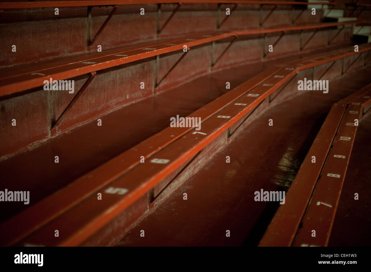 Empty bleachers with numbers marking place, seats in a large auditorium - Stock Image