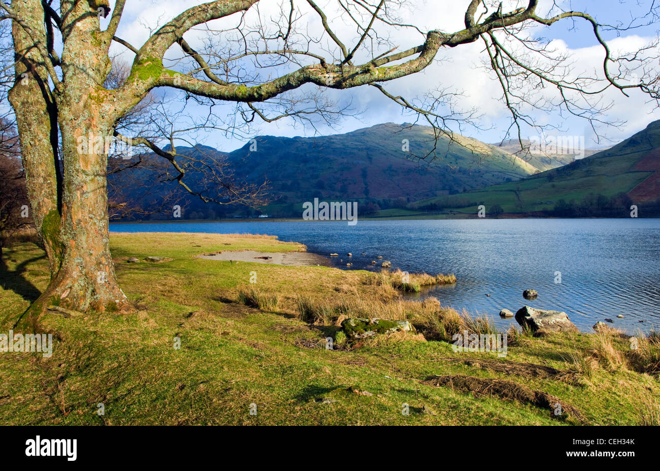 Brothers Water, Hartsop, January, Patterdale area, Lake District National Park, North East Lake District Cumbria - Stock Image
