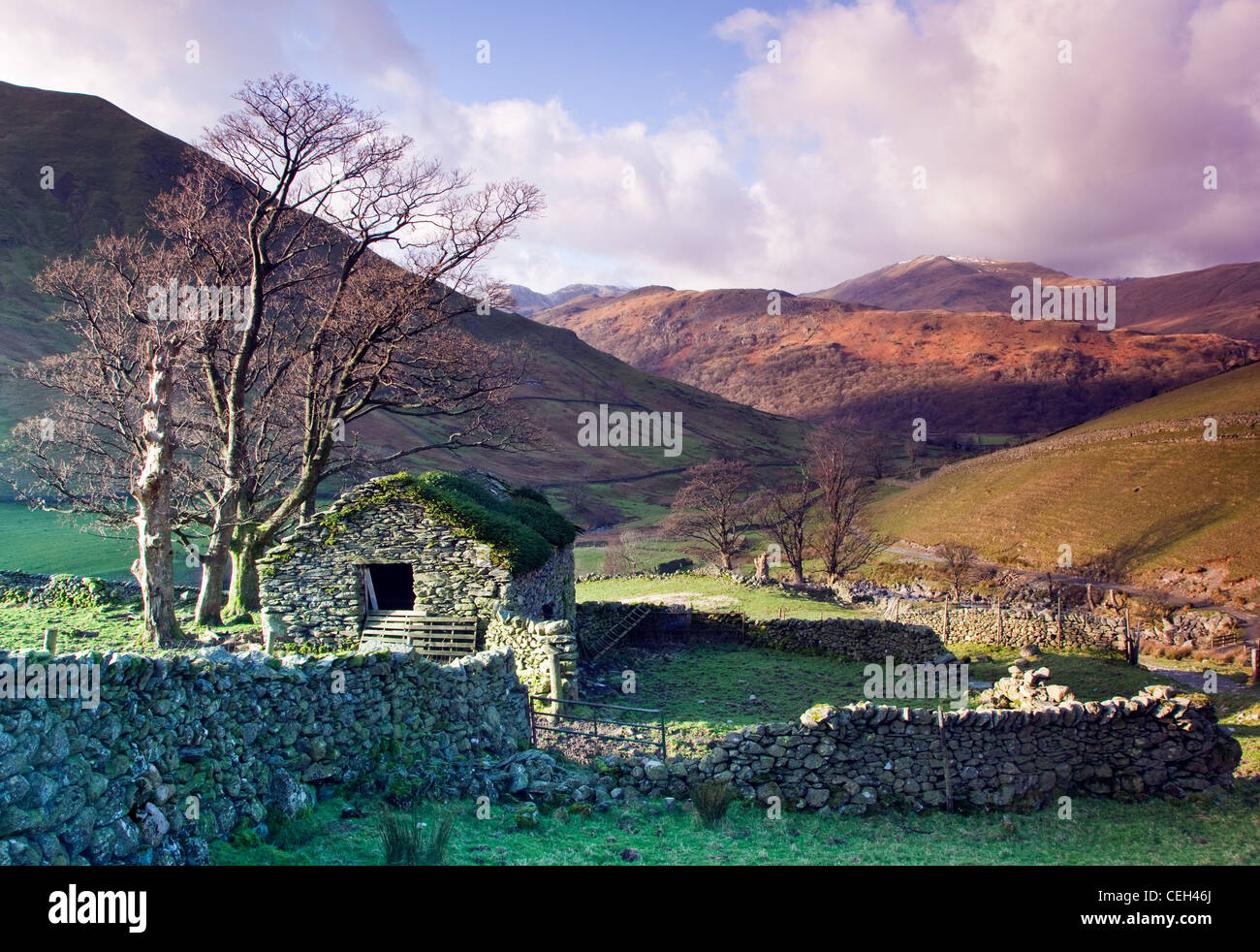 Derelict stone barn, on path down from Hayswater approaching Hartsop Vollage, Hartsop, Patterdale area, Lake District - Stock Image