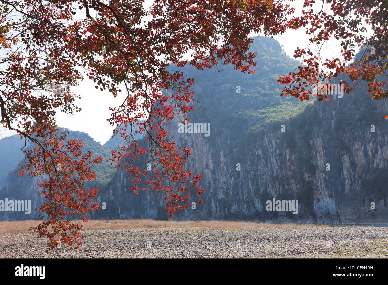 China  Guilin  Physical Geography  Guangxi Region  Beauty In Nature  maple leaf travel  scenics - Stock Image