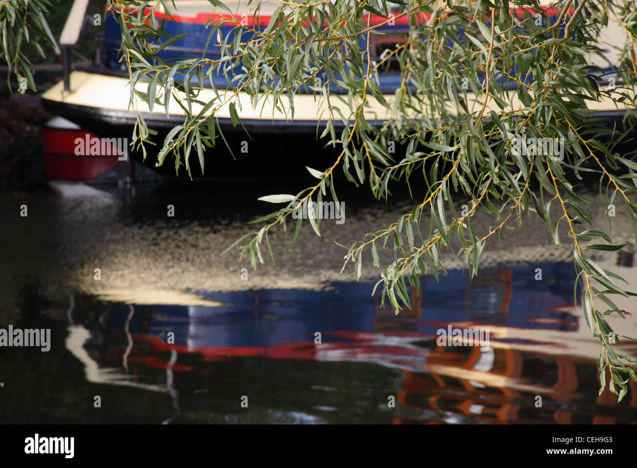 A narrowboat reflected in the waters of the river avon near Bidford on Avon, Warwickshire, with a branch of willow - Stock Image