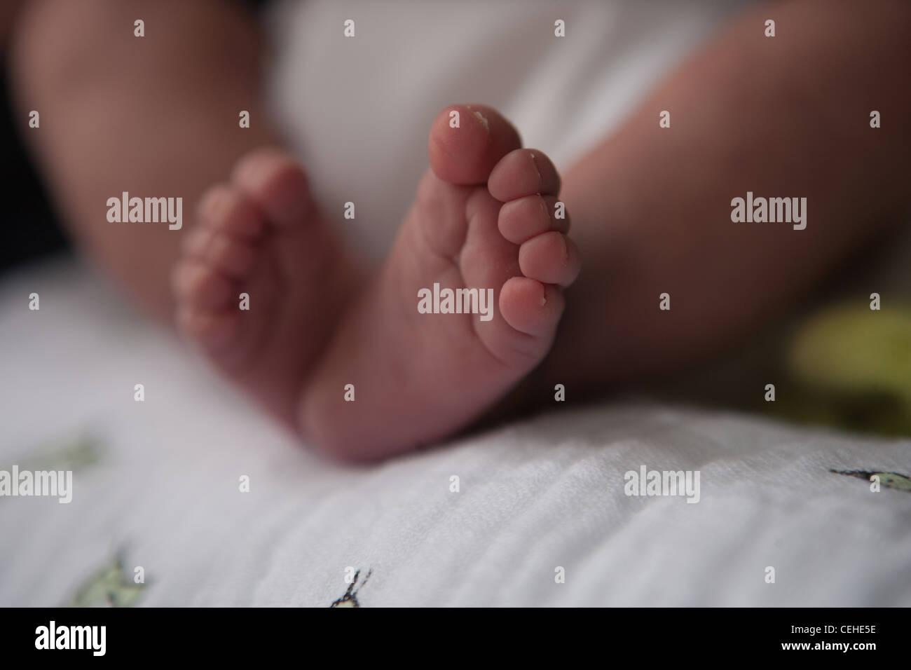 Newborn baby feet with long toenail nail toe Stock Photo: 43410234 ...