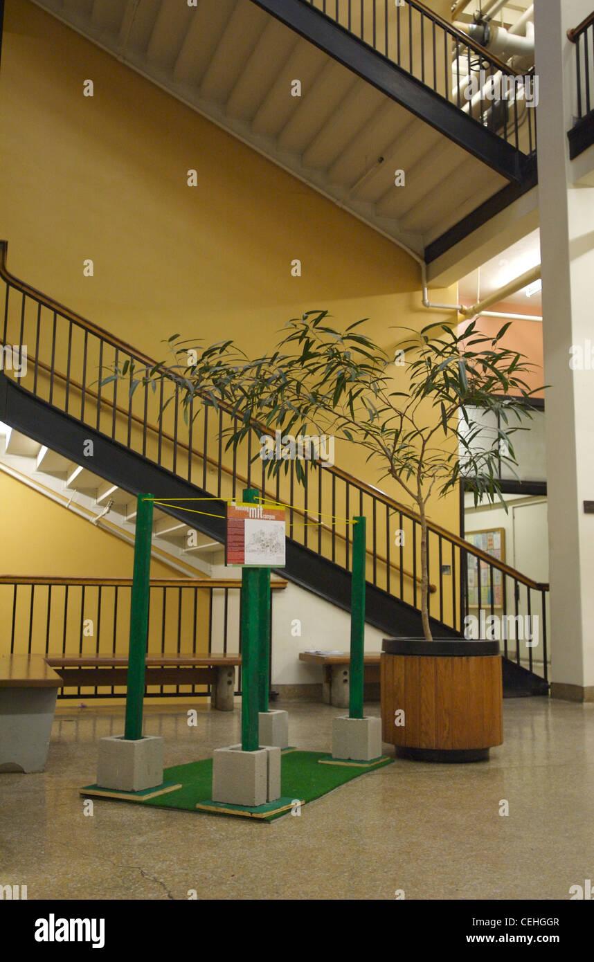 Devolving/Evolving Campus Greenspace Hack at MIT, 2006. - Stock Image
