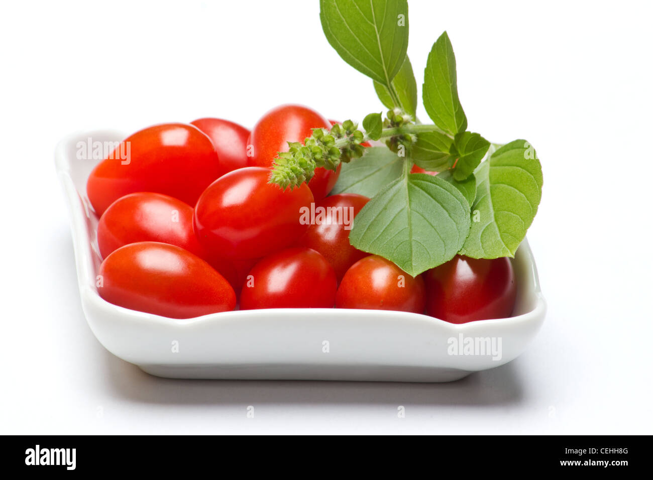 Fresh tomatoes and a sprig of basil on white background. - Stock Image