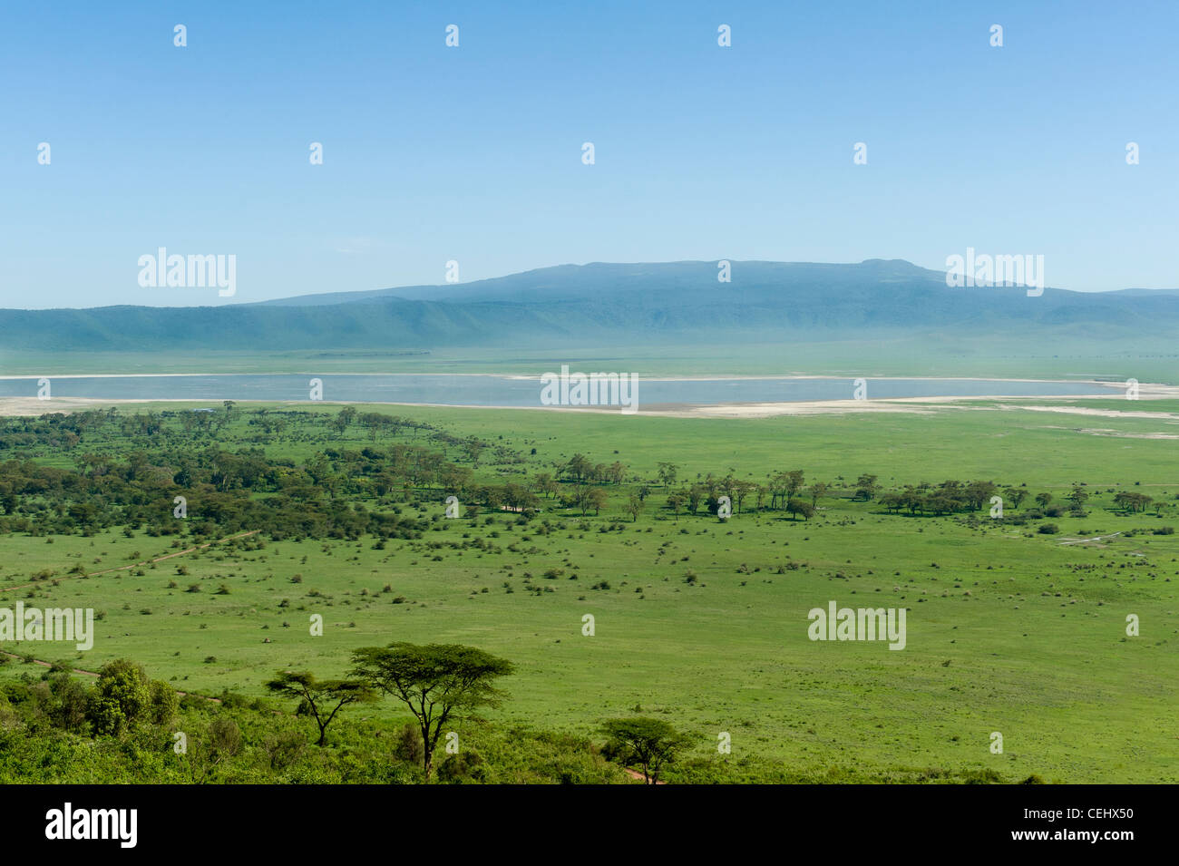 Ngorongoro Crater panoramic view from ascent road Tanzania - Stock Image