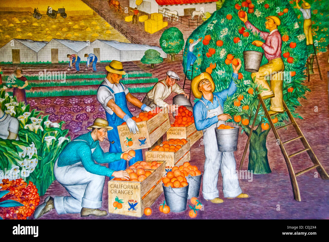 Created in 1934 by artist Maxine Albro, a fresco in the Social Realism artistic style entitled 'California Agriculture' - Stock Image