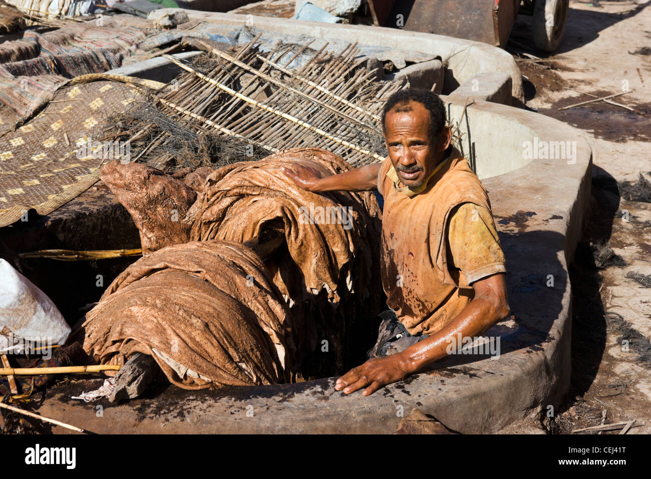 Local leather worker in the Tanneries, Medina district, Marrakech, Morocco, North Africa - Stock Image
