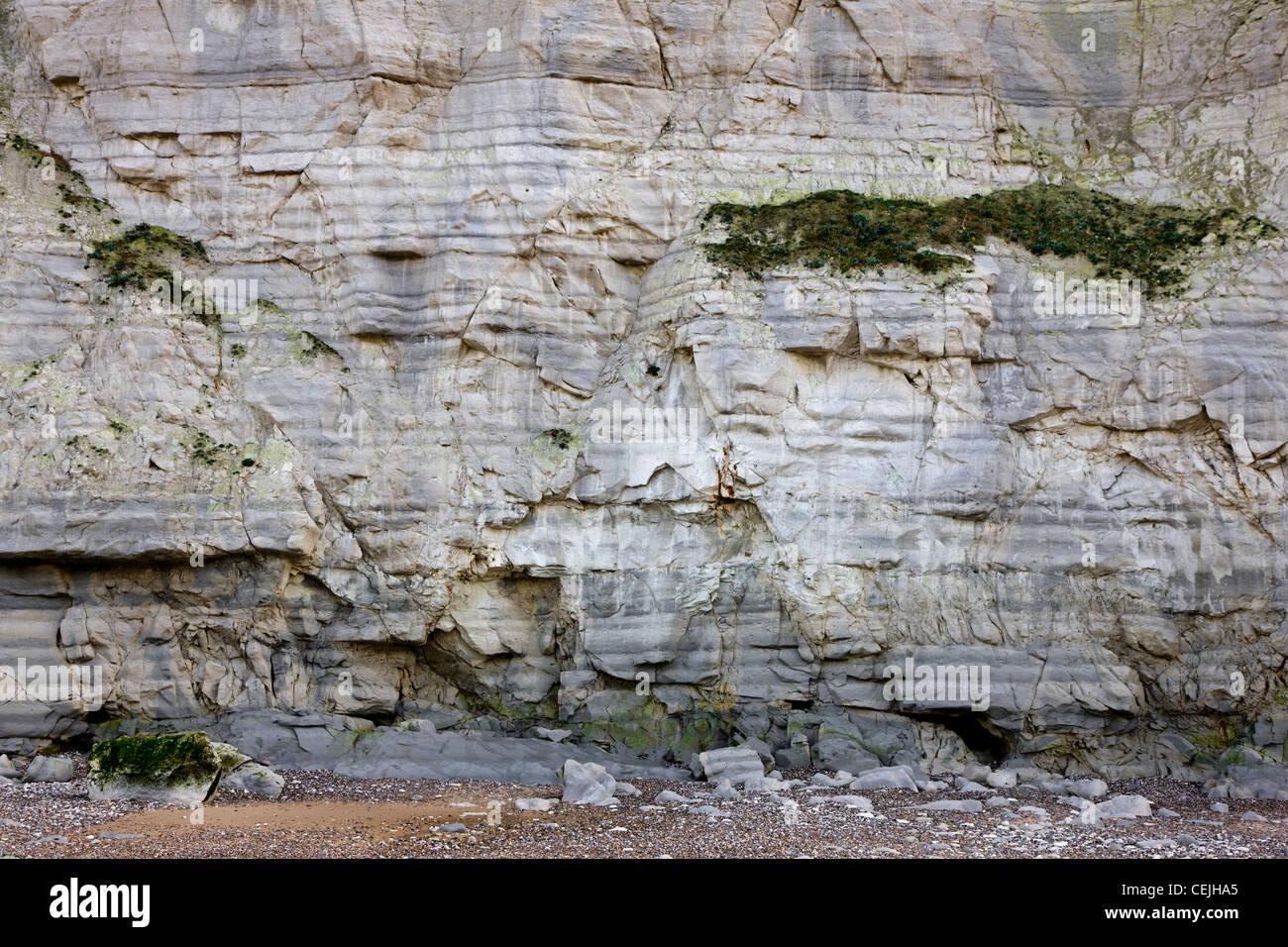 The white chalk cliffs at Cap Blanc Nez, Pas-de-Calais, France - Stock Image