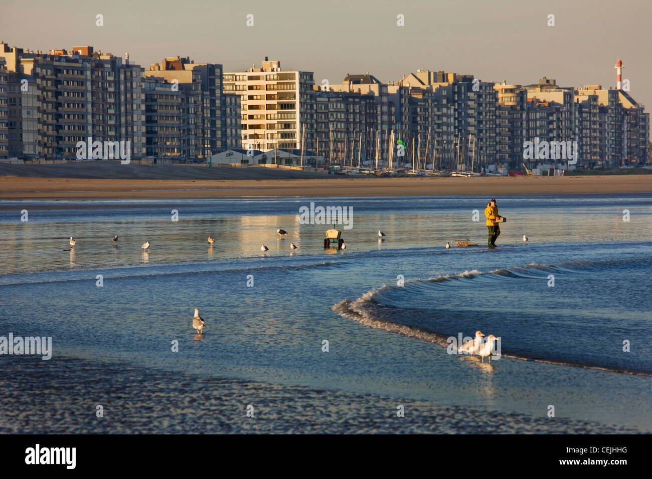 Belgian urban development showing apartments along the North Sea coast at Knokke-Heist, Belgium - Stock Image